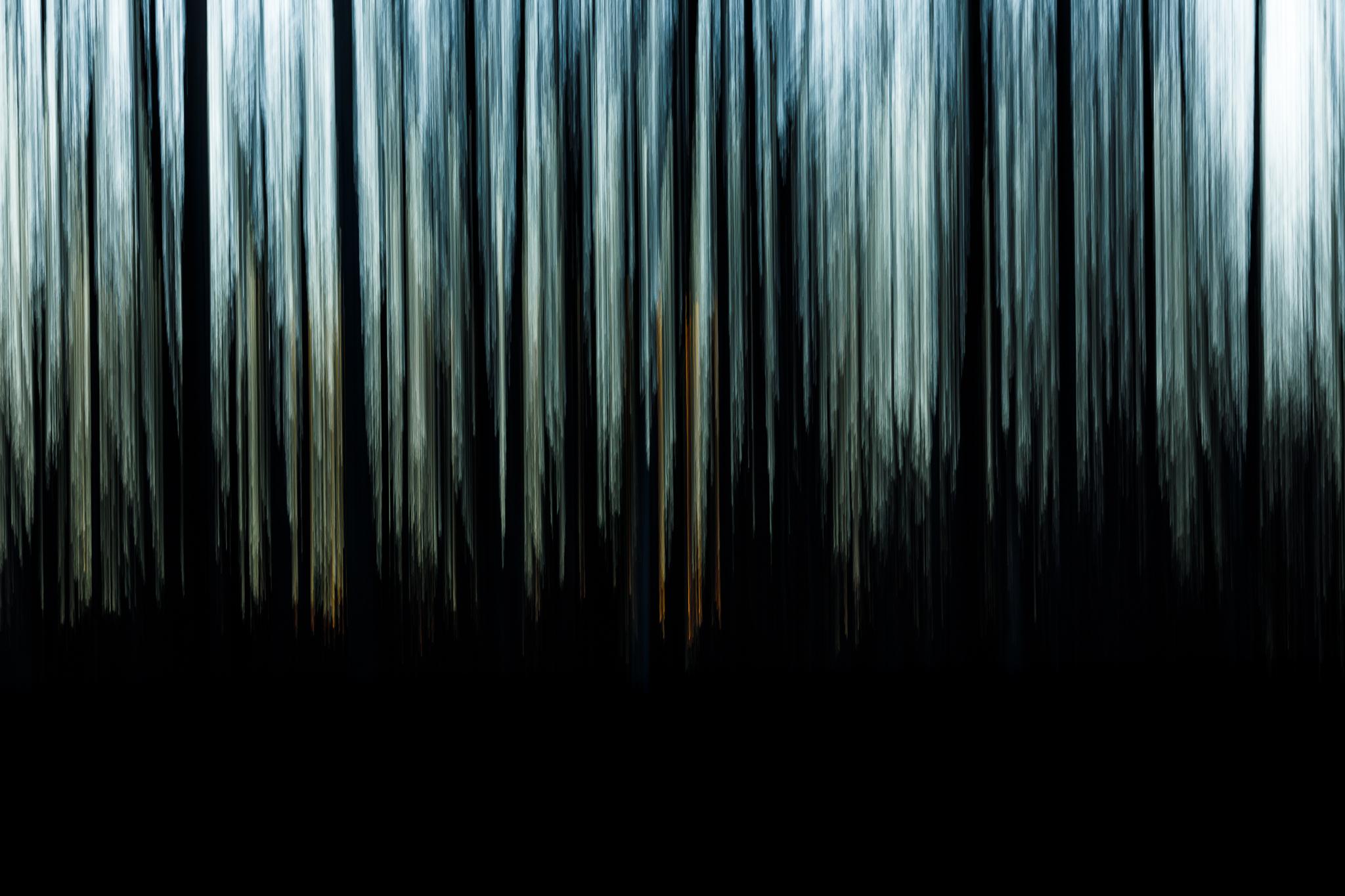 Evanescence hivernale